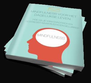 Mindfullness voor het Dagelijkse leven review en ervaringen