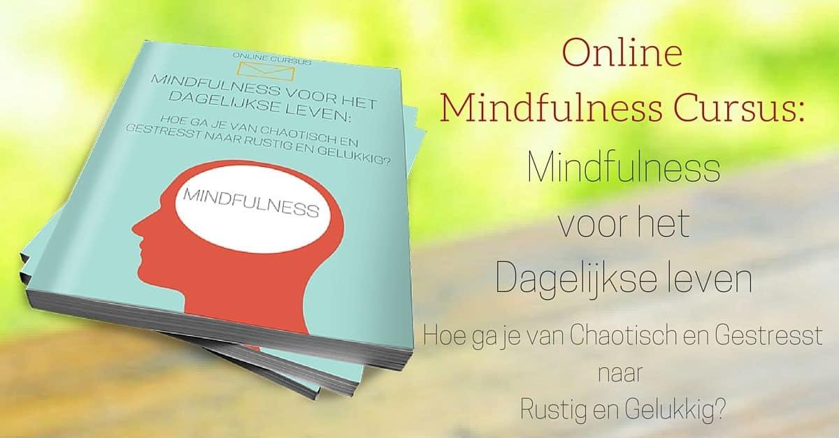 Online Mindfullness cursus review en ervaringen